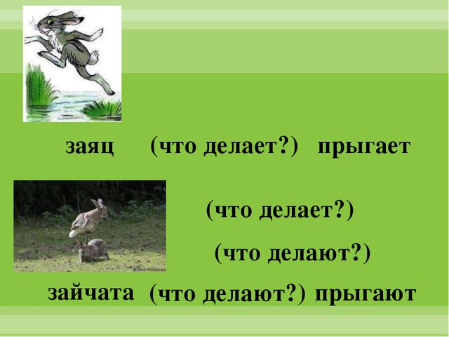 заяц зайчата прыгает прыгают (что делает?) (что делают?) (что делает?) (что д...