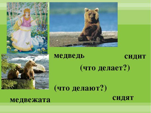 медведь медвежата сидят сидит (что делает?) (что делают?)
