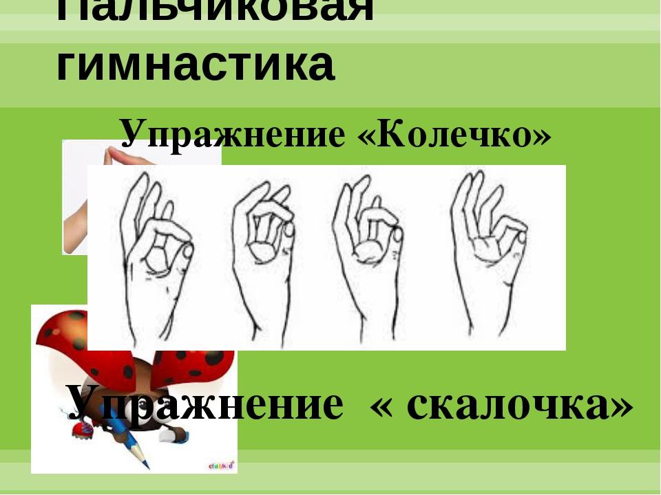 Пальчиковая гимнастика Упражнение «Колечко» Упражнение « скалочка»