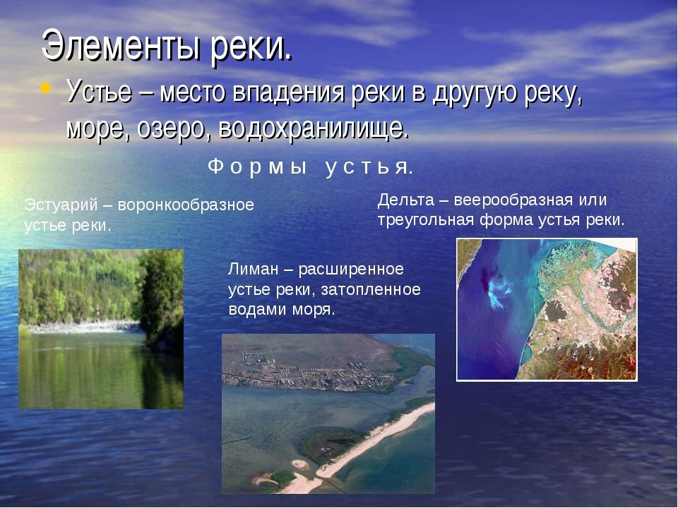 Элементы реки. Устье – место впадения реки в другую реку, море, озеро, водохр...