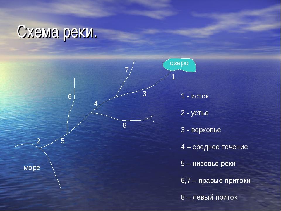 Схема реки. 1 - исток 2 - устье 3 - верховье 4 – среднее течение 5 – низовье...