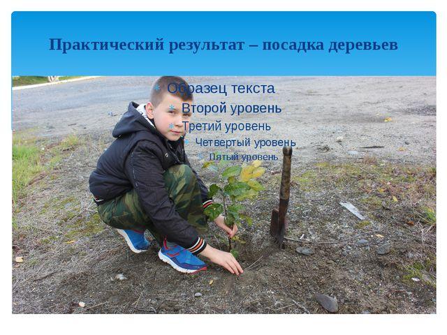 Практический результат – посадка деревьев