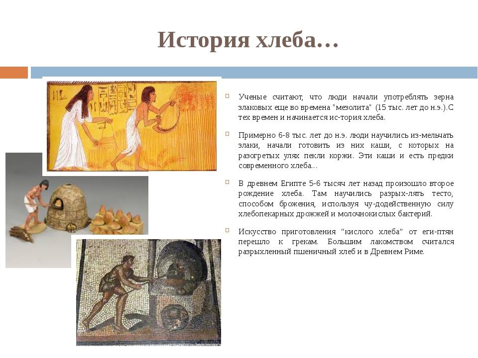 История хлеба… Ученые считают, что люди начали употреблять зерна злаковых еще...