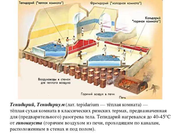 Тепидарий, Тепидариум (лат. tepidarium — тёплая комната) — тёплая сухая комна...