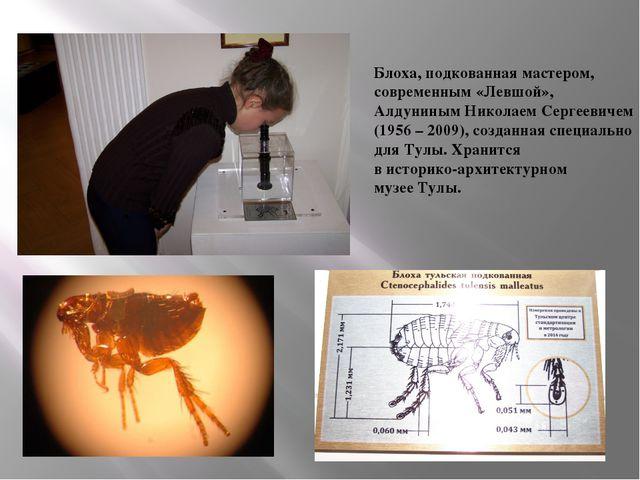 Блоха, подкованная мастером, современным «Левшой», Алдуниным Николаем Сергеев...