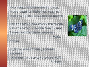 «На озеро слетает ветер с гор. И всё садится бабочка, садится И сесть никак н