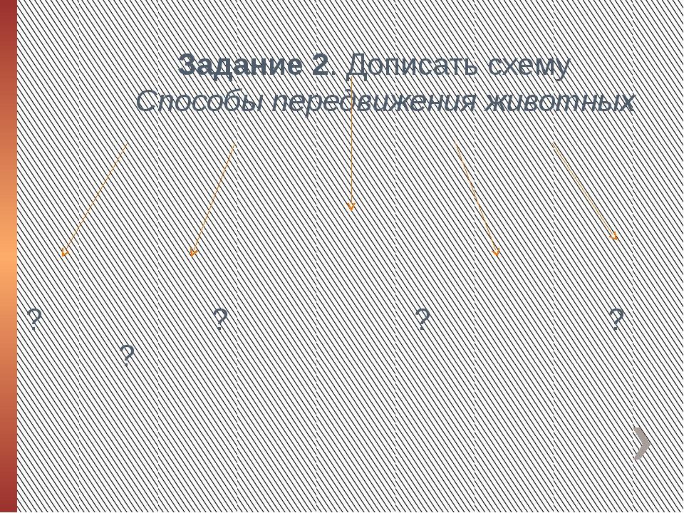 Задание 2. Дописать схему Способы передвижения животных    ? ? ? ? ?