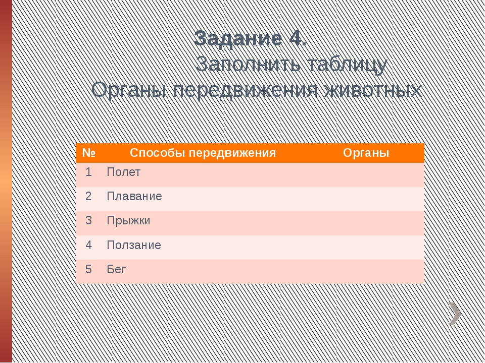 Задание 4. Заполнить таблицу Органы передвижения животных № Способы передвиже...