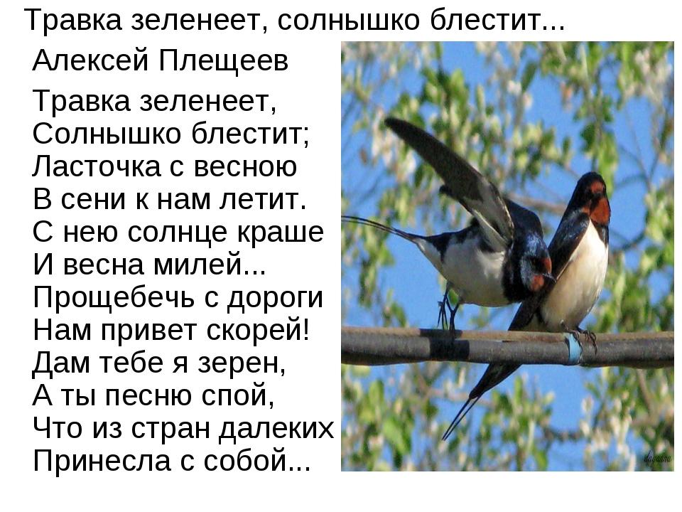 Травка зеленеет, солнышко блестит... Алексей Плещеев Травка зеленеет, Солныш...