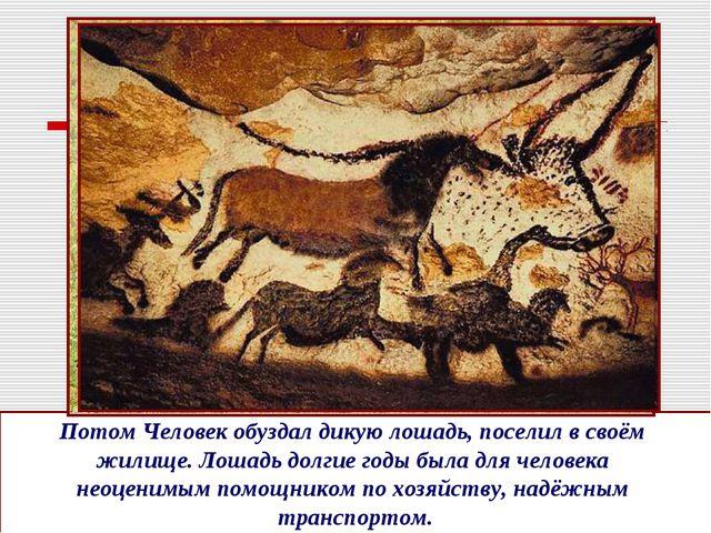 Потом Человек обуздал дикую лошадь, поселил в своём жилище. Лошадь долгие год...
