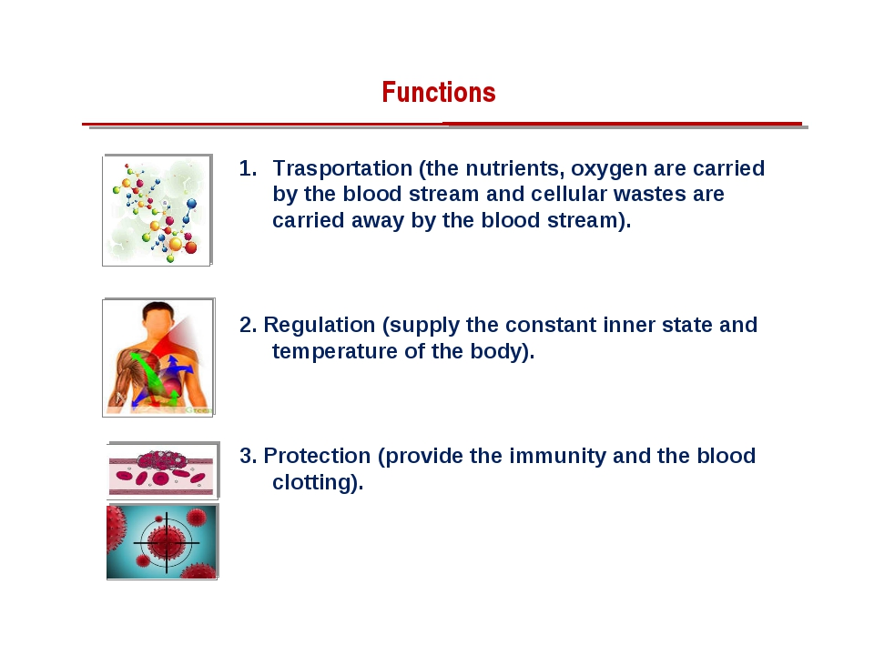 Trasportation (the nutrients, oxygen are carried by the blood stream and cell...