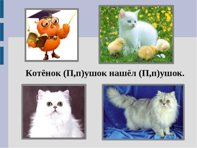 Котёнок (П,п)ушок нашёл (П,п)ушок.