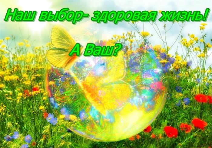 http://kuzenkovd.ru/wp-content/uploads/2012/09/zdorovyi-obraz-zhizni_.jpg