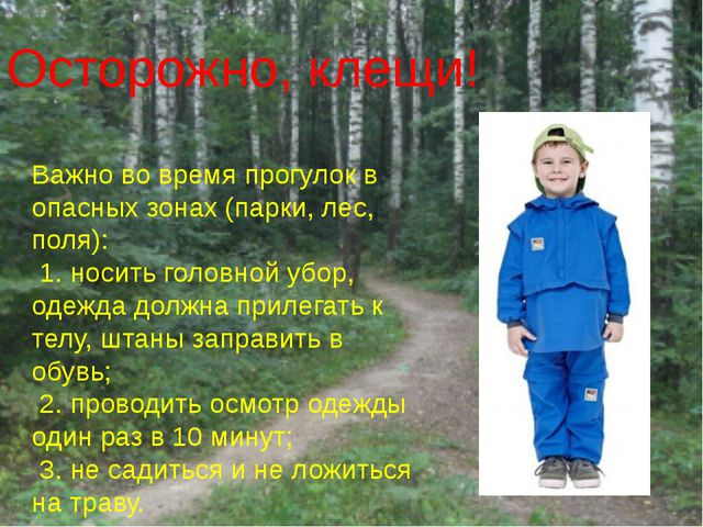 Осторожно, клещи! Важно во время прогулок в опасных зонах (парки, лес, поля):...