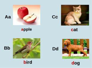Aa Bb Cc Dd apple bird cat dog