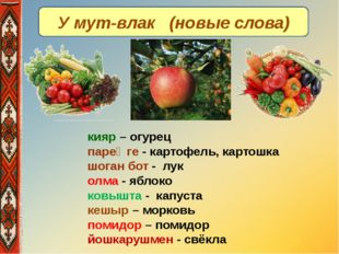 У мут-влак (новые слова) кияр – огурец пареҥге - картофель, картошка шоган бо