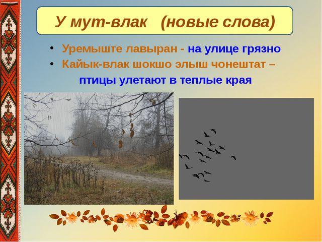 У мут-влак (новые слова) Уремыште лавыран - на улице грязно Кайык-влак шокшо...