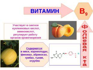 ВИТАМИН B9 Участвует в синтезе нуклеиновых кислот, аминокислот, регулирует ра