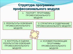 Структура программы профессионального модуля ПАСПОРТ ПРОГРАММЫ ПРОФЕССИОНАЛЬН
