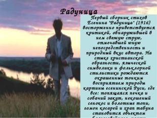 """Первый сборник стихов Есенина """"Радуница"""" (1916) восторженно приветствуется кр"""