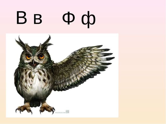 В в Ф ф
