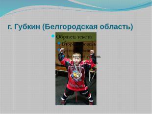 г. Губкин (Белгородская область)