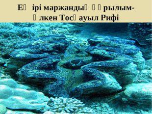 Ең ірі маржандық құрылым-Үлкен Тосқауыл Рифі