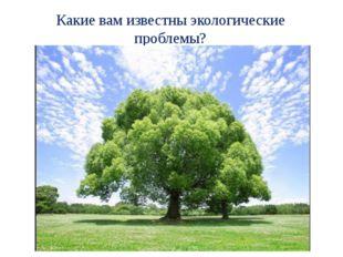 Какие вам известны экологические проблемы?