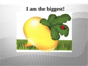 I am the biggest!