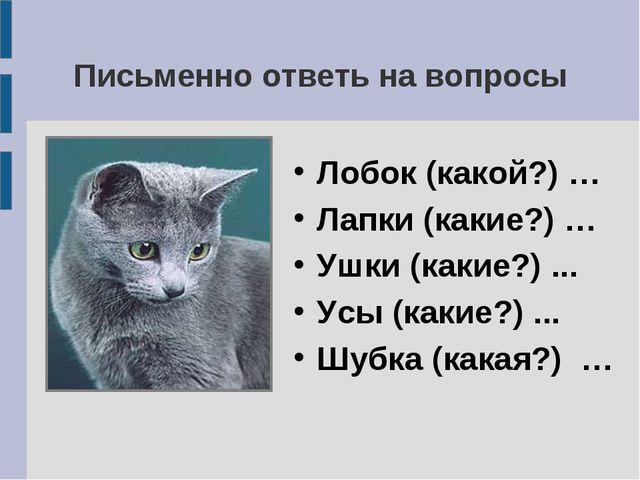 Письменно ответь на вопросы Лобок (какой?) … Лапки (какие?) … Ушки (какие?) ....