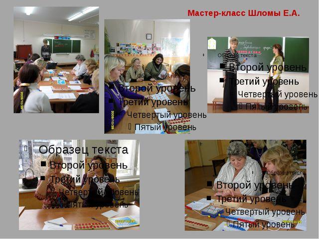 Мастер-класс Шломы Е.А.