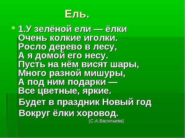 Ель. 1.У зелёной ели — ёлки Очень колкие иголки. Росло дерево в лесу, А я до...