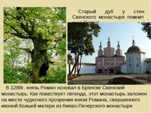 Старый дуб у стен Cвенского монастыря помнит еще ПетраI В 1288г. князь Роман