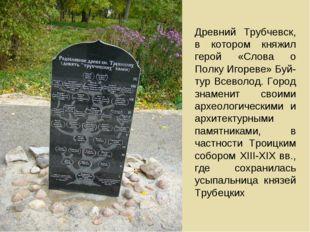 Древний Трубчевск, в котором княжил герой «Слова о Полку Игореве» Буй-тур Все