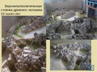 Верхнепалеолитическая стоянка древнего человека 15 тысяч лет