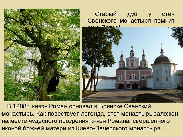 Старый дуб у стен Cвенского монастыря помнит еще ПетраI В 1288г. князь Роман...