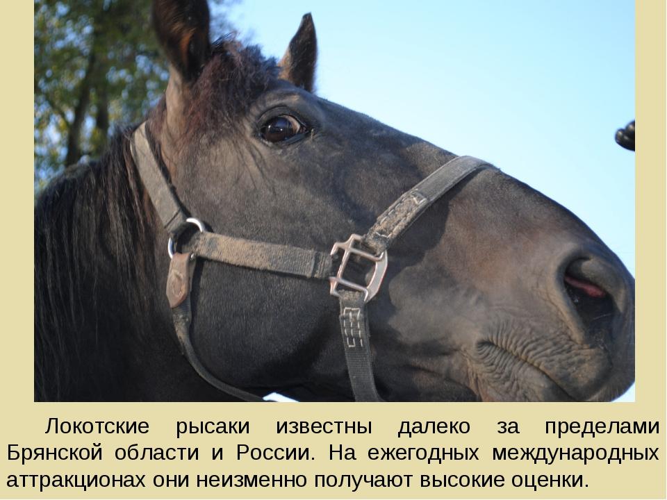Локотские рысаки известны далеко за пределами Брянской области и России. На е...