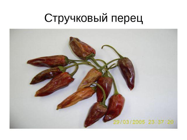 Стручковый перец