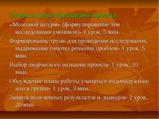 Этапы и сроки проведения проекта: «Мозговой штурм» (формулирование тем исслед