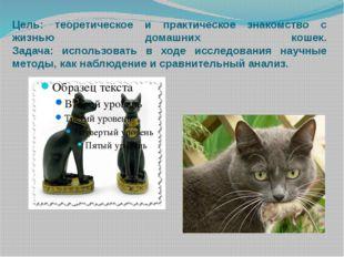 Цель: теоретическое и практическое знакомство с жизнью домашних кошек. Задача