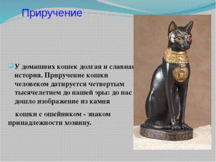 У домашних кошек долгая и славная история. Приручение кошки человеком датируе