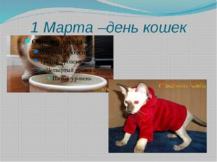 1 Марта –день кошек