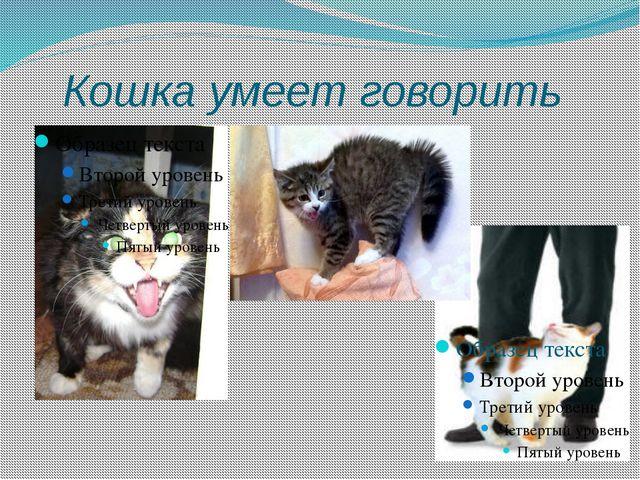 Кошка умеет говорить