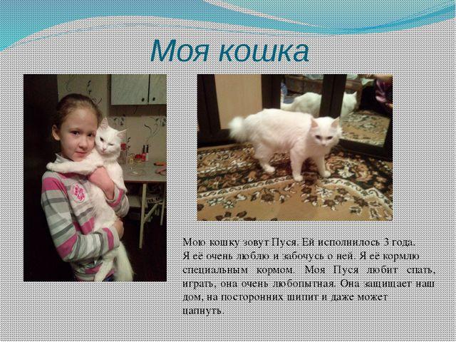 Моя кошка Мою кошку зовут Пуся. Ей исполнилось 3 года. Я её очень люблю и заб...