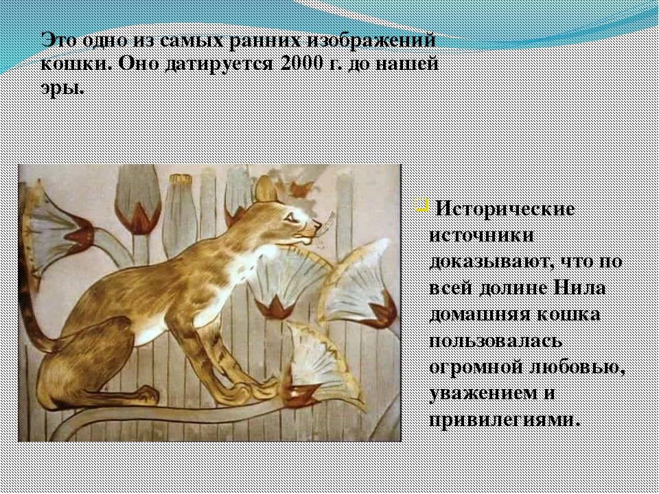 Это одно из самых ранних изображений кошки. Оно датируется 2000 г. до нашей э...