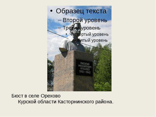 Бюст в селе Орехово Курской области Касторнинского района.