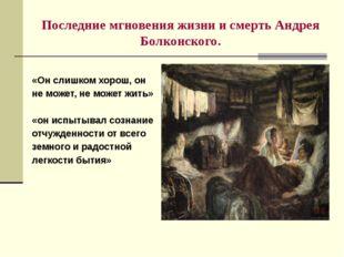 Последние мгновения жизни и смерть Андрея Болконского. «Он слишком хорош, он