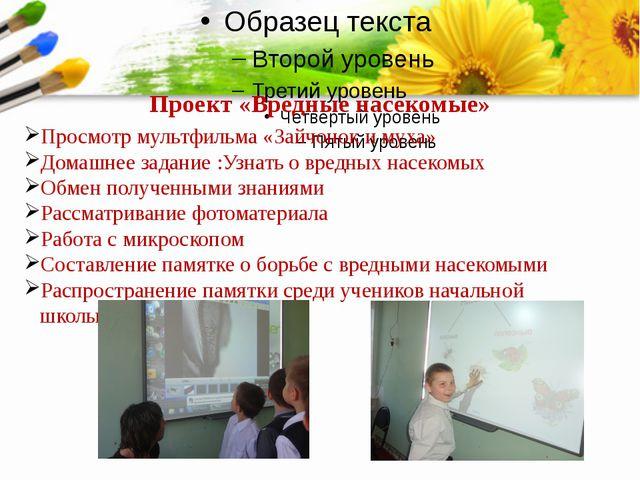 Проект «Вредные насекомые» Просмотр мультфильма «Зайчонок и муха» Домашнее з...