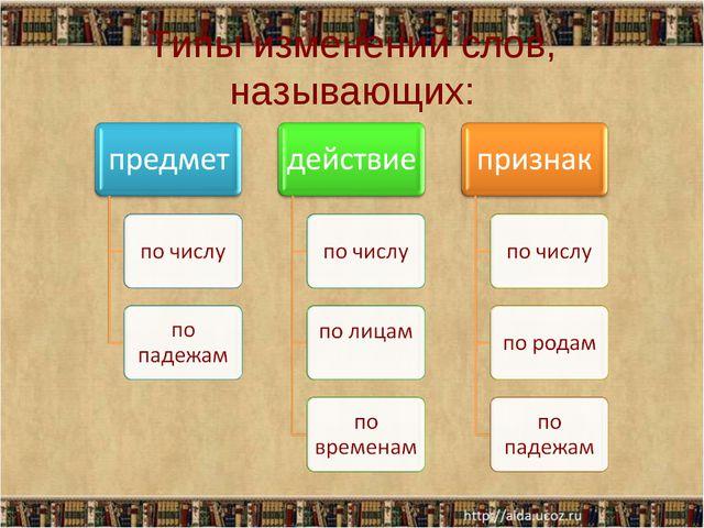 Типы изменений слов, называющих:
