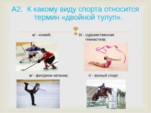 А2. К какому виду спорта относится термин «двойной тулуп». а/ - хоккей; б/ -